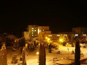 Medobory at night in winter