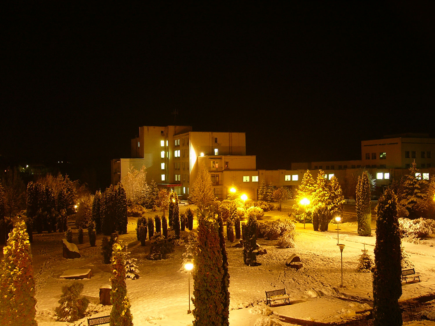 Medobory at night in winter