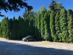 A parking lot at the territory of a sanatorium