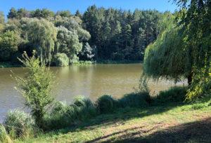 Часть парка возле реки Нишла