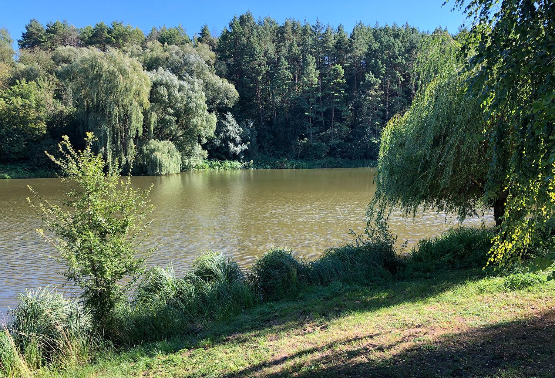 Частина парку коло річки Нішла